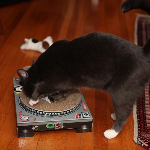 DJ Cat Scratch Turntable - Suck UK - Pickture